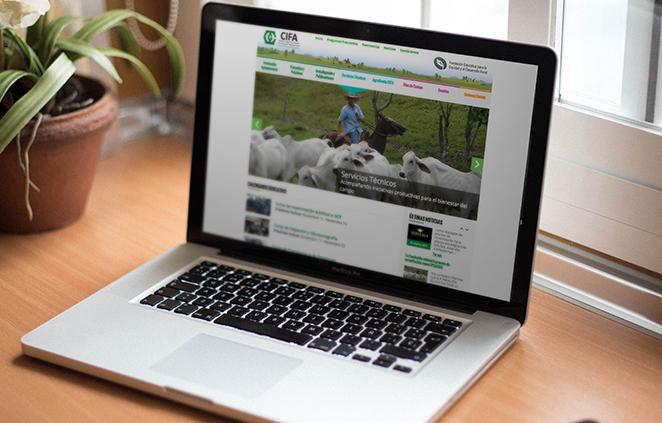 Diseño web para CIFA