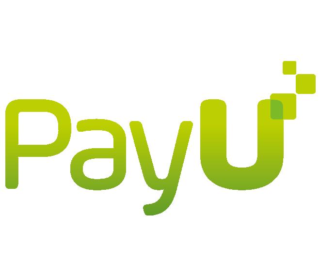 PayU - Diseño Web y Marketing Digital - Pixelpro